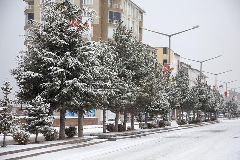 Ahlat kar yağışıyla birlikte beyaza büründü