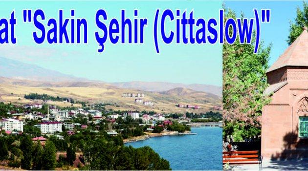 """Ahlat'ta """"Sakin Şehir"""" aday başvurusu sevinçle karşılandı"""