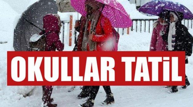 Ahlat'ta okullar tatil