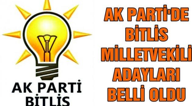 AK Parti Bitlis milletvekili aday listesi belli oldu