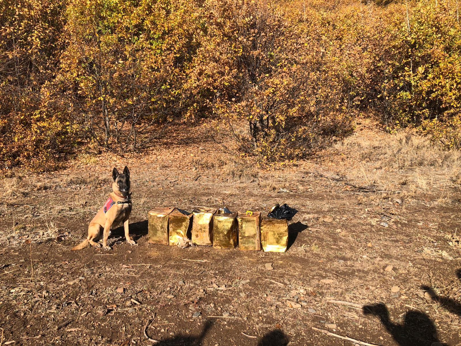 Jandarma Bitlis'te 100 kilogram patlayıcı madde ele geçirdi