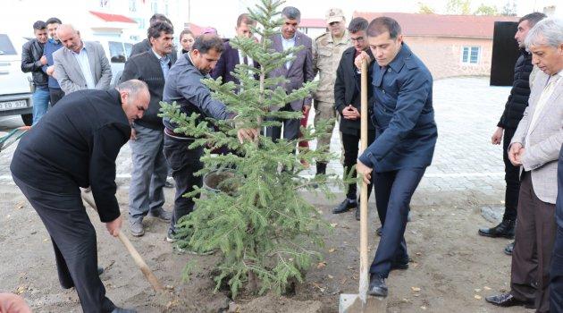 Şehit Eren Öztürk anısına ağaç dikildi