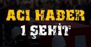 Bitlis'te hain tuzak: 1 şehit