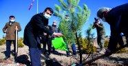 Ahlat'ta 'öğretmen hatıra ormanı' oluşturuldu