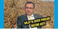 AHLAT'TA ŞEKER PANCARI ÜRETİMİ ARTTI