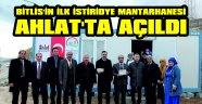 AHLAT'TAN BÖLGEYE İSTİRİDYE MANTARI