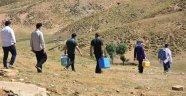 Bitlis'te 150 yaylacı çadırlarında aşı oldu