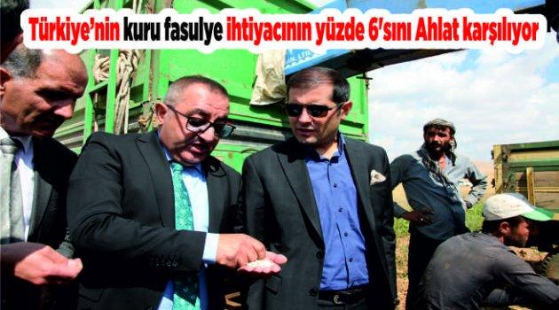 Türkiye'nin kuru fasulye ihtiyacının yüzde 6'sını Ahlat karşılıyor